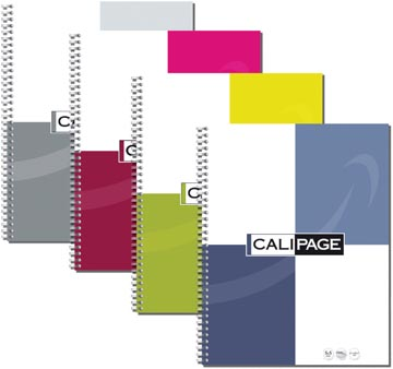 Calipage cahier spirale ft A4, petits carreaux, couleurs assorties, 100 pages